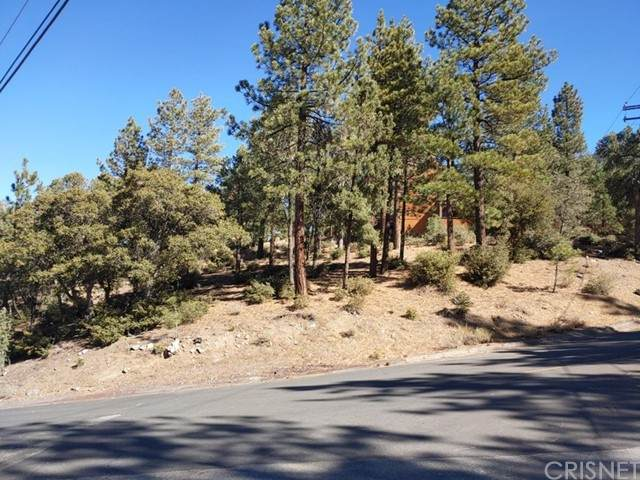 1700 Zermatt Drive, Pine Mountain Club, CA 93225 (#SR21227461) :: Berkshire Hathaway HomeServices California Properties