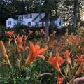 1030 Dunbar Hill Road - Photo 1