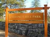 111 Chestnut Hill Lane - Photo 37