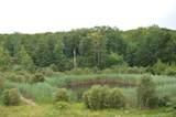 1 Ives (49 Acres) Court - Photo 1