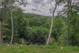 M75/L231 Falls Bashan Road - Photo 3