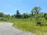 Lot 2 Mount Sanford Road - Photo 6