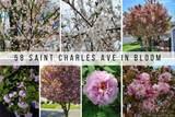 58 Saint Charles Avenue - Photo 5