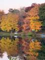 103 Fall Mountain Lake Road - Photo 36