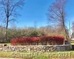 LOT 14 Syleo Lane - Photo 1