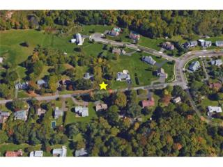 0 Maple Shade Rd, Middletown, CT 06457 (MLS #G10206070) :: Carbutti & Co Realtors