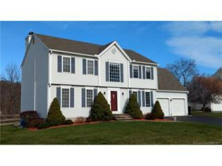 93 Coles Rd, Middletown, CT 06457 (MLS #G10216831) :: Carbutti & Co Realtors