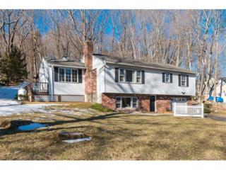 32 Straits Rd, Chester, CT 06412 (MLS #N10205198) :: Carbutti & Co Realtors