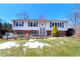 146 North Hill Rd, North Haven, CT 06473 (MLS #N10206137) :: Carbutti & Co Realtors