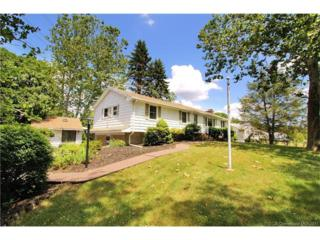 479 Treat Lane, Orange, CT 06477 (MLS #N10215335) :: Carbutti & Co Realtors