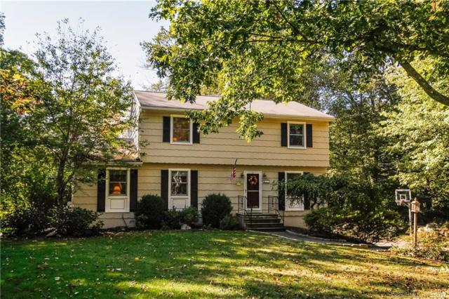 41 Hiram Hill Road, Monroe, CT 06468 (MLS #170022846) :: Stephanie Ellison