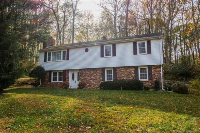 170 Wilderwood Drive, Guilford, CT 06437 (MLS #170029751) :: Carbutti & Co Realtors