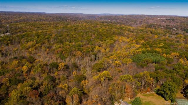 Lot A+B Honey Hill Rd, Wilton, CT 06897 (MLS #170030628) :: The Higgins Group - The CT Home Finder