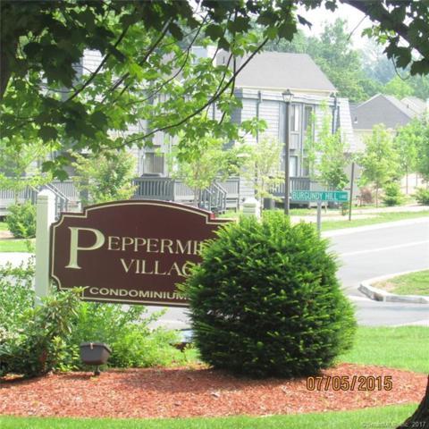 90 Burgundy Hill Lane #90, Middletown, CT 06457 (MLS #170032020) :: Carbutti & Co Realtors