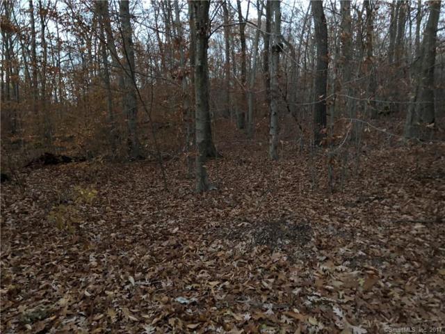 91 Forest Glen Drive, Woodbridge, CT 06525 (MLS #170034423) :: Stephanie Ellison