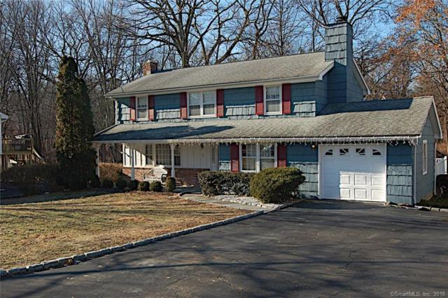 63 Elaine Drive, Stamford, CT 06902 (MLS #170044319) :: The Higgins Group - The CT Home Finder