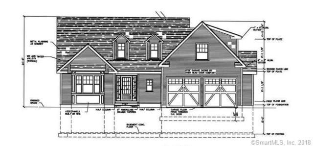 49 Long Hill Road, East Hampton, CT 06424 (MLS #170047673) :: Carbutti & Co Realtors