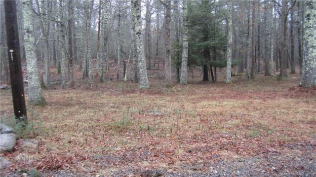 0 Border Trail, Thompson, CT 06277 (MLS #170055298) :: Anytime Realty