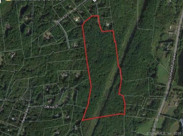 20 Blue Trails Drive, Woodbridge, CT 06525 (MLS #170058455) :: Stephanie Ellison