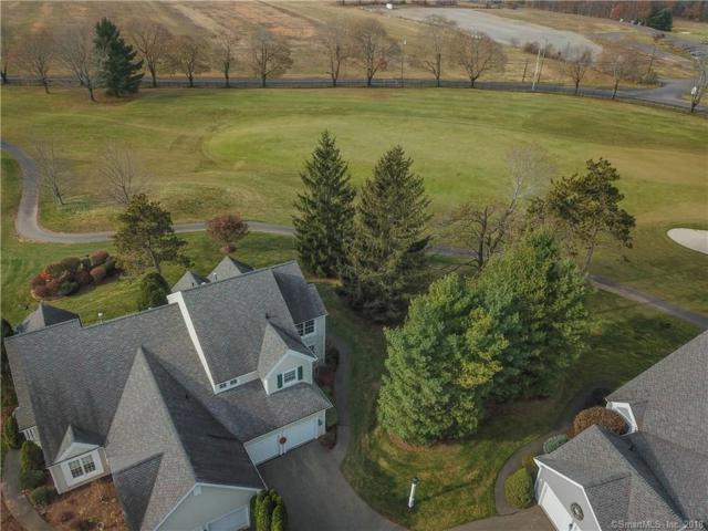 6 Priorwood Gardens, Cromwell, CT 06416 (MLS #170074160) :: Carbutti & Co Realtors
