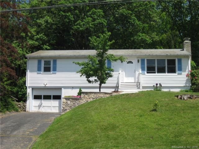 14 Buckskin Heights Drive, Danbury, CT 06811 (MLS #170087502) :: Stephanie Ellison