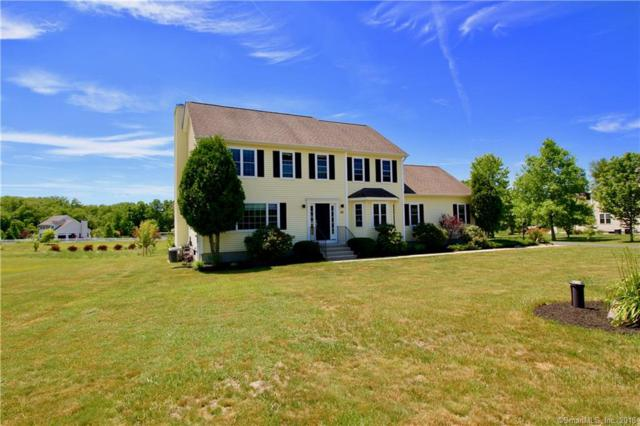 20 Haley Meadow Road, Griswold, CT 06351 (MLS #170091386) :: Carbutti & Co Realtors