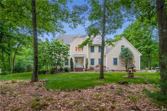 73 Elizabeth Drive, Southington, CT 06489 (MLS #170095446) :: Hergenrother Realty Group Connecticut