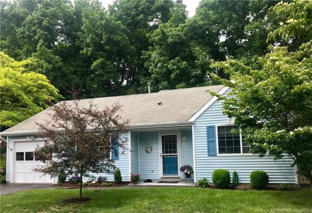 25 Apple Way, Madison, CT 06443 (MLS #170095553) :: Carbutti & Co Realtors