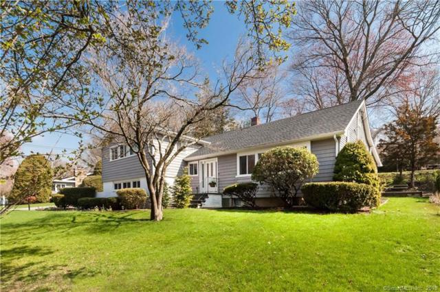 36 Curtis Terrace, Fairfield, CT 06825 (MLS #170099778) :: Carbutti & Co Realtors