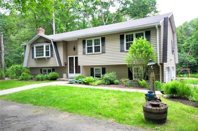 22 Maillet Lane, New Hartford, CT 06057 (MLS #170100675) :: Hergenrother Realty Group Connecticut