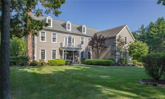 29 Sunnyview Drive, Redding, CT 06896 (MLS #170102701) :: The Higgins Group - The CT Home Finder