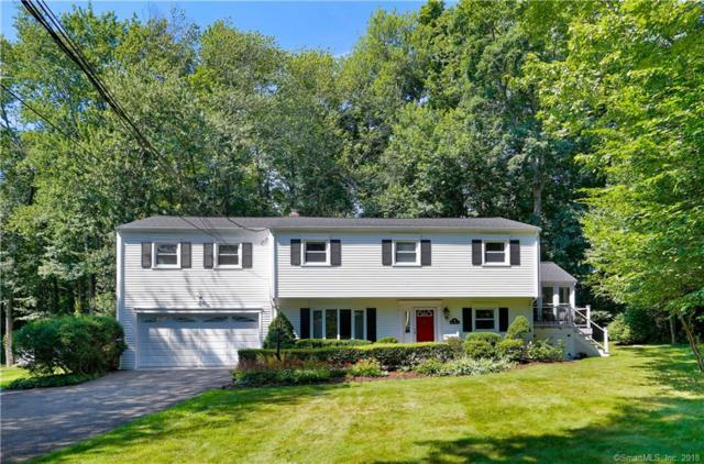 96 Harvest Hill Lane, Stamford, CT 06905 (MLS #170104692) :: Carbutti & Co Realtors