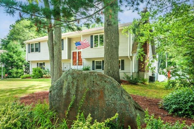 123 Gannet Drive, Southington, CT 06489 (MLS #170104916) :: Hergenrother Realty Group Connecticut