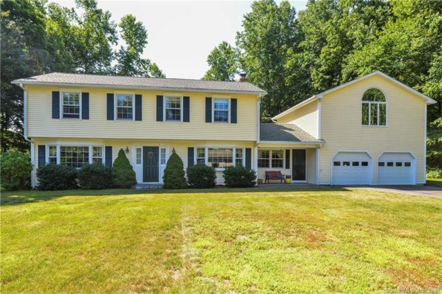 31 Driftwood Lane, Shelton, CT 06484 (MLS #170105405) :: Stephanie Ellison