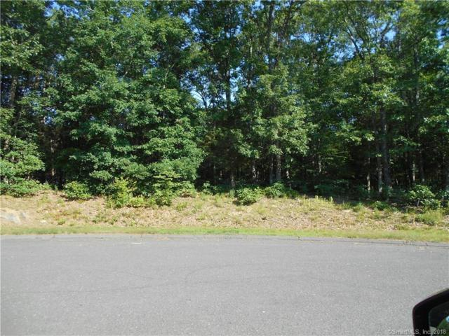 48 Acorn Drive, Bethany, CT 06524 (MLS #170105497) :: Stephanie Ellison