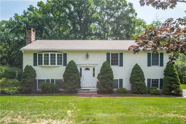 149 Jubilee Drive, Southington, CT 06479 (MLS #170105918) :: Hergenrother Realty Group Connecticut