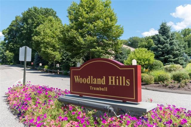 304 Woodland Hills Drive #304, Trumbull, CT 06611 (MLS #170107480) :: Carbutti & Co Realtors