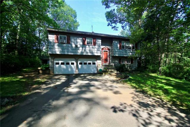 217 Great Plain Road, Danbury, CT 06811 (MLS #170108202) :: Stephanie Ellison