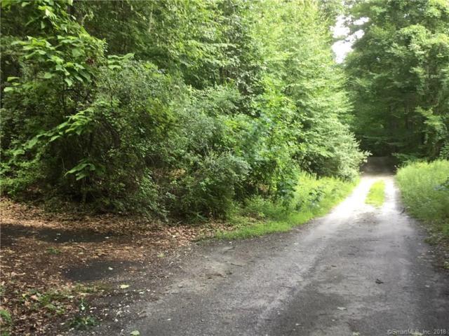 3 Bear Lane, New Milford, CT 06776 (MLS #170109291) :: Carbutti & Co Realtors