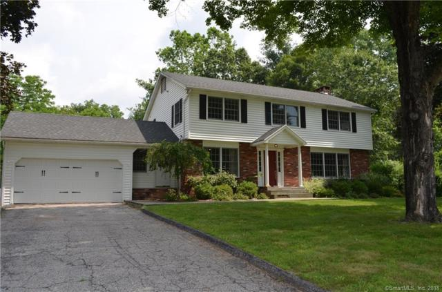 20 Hillendale Drive, New Milford, CT 06776 (MLS #170116578) :: Carbutti & Co Realtors