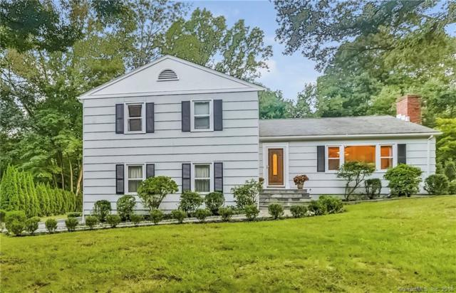 6 Nyselius Place, Stamford, CT 06905 (MLS #170117895) :: Hergenrother Realty Group Connecticut
