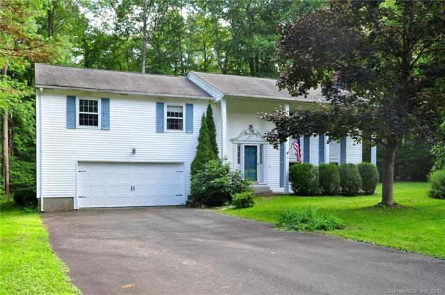 15 Partridge Lane, Burlington, CT 06013 (MLS #170122169) :: Hergenrother Realty Group Connecticut