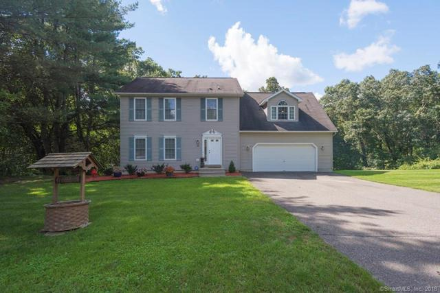 101 Long Mountain Road, New Milford, CT 06776 (MLS #170125371) :: Carbutti & Co Realtors