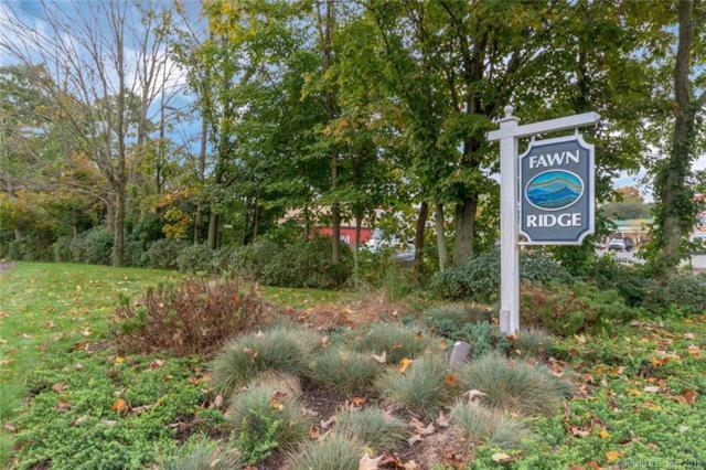 73 Fawn Ridge Lane #73, Norwalk, CT 06851 (MLS #170132814) :: Carbutti & Co Realtors