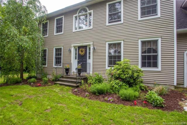 29 Chestnut Hill Road, Hebron, CT 06248 (MLS #170133175) :: Anytime Realty