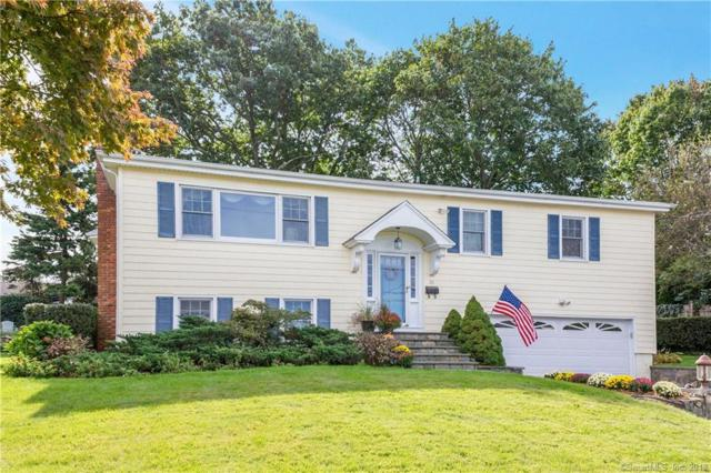 39 Gurley Road, Stamford, CT 06902 (MLS #170137454) :: Carbutti & Co Realtors