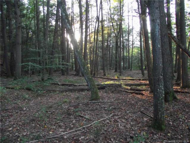 Lot 17 Shailor Hill Road, Colchester, CT 06415 (MLS #170140600) :: Anytime Realty