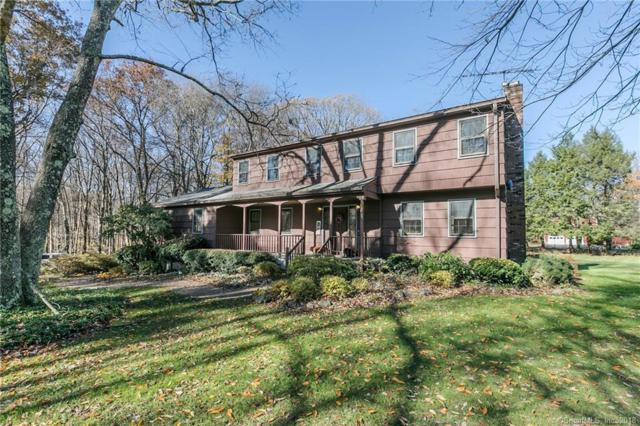 12 Chestnut Knoll Drive, Newtown, CT 06482 (MLS #170142416) :: Hergenrother Realty Group Connecticut