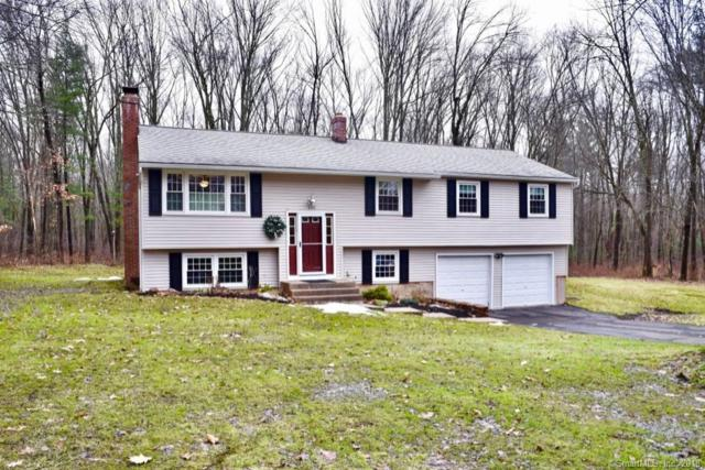 100 Old Meadow Plain Road, Simsbury, CT 06089 (MLS #170146087) :: Stephanie Ellison