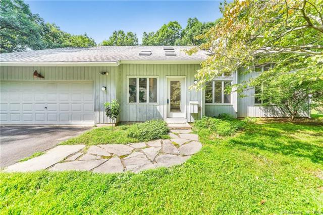 47 Reed Road, Tolland, CT 06084 (MLS #170150229) :: Anytime Realty